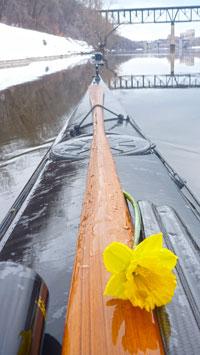 QR-flower